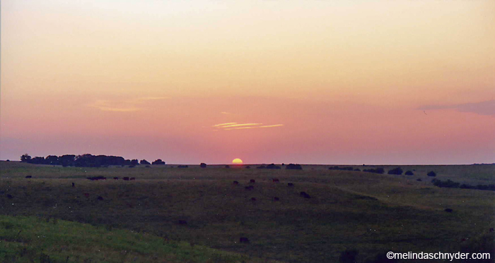 visting the Tallgrass Prairie National Preserve in Flint Hills Kansas