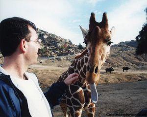 Travel_SDWP_Giraffe_Tongue.jpg